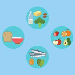 Alimentação na gravide