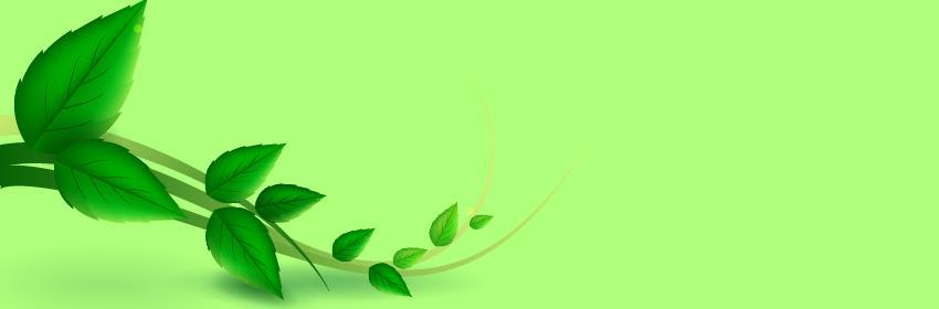 curso de agroecologia