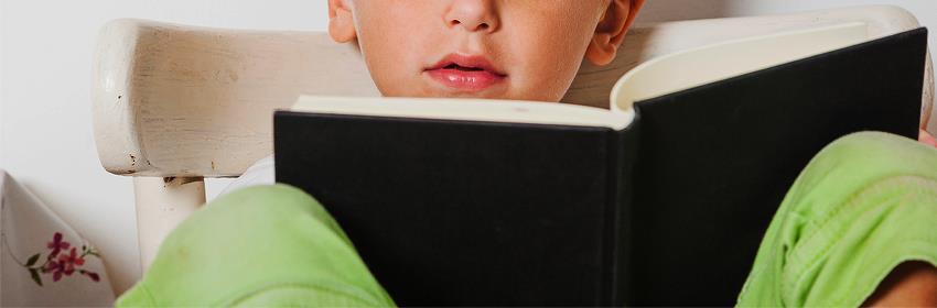 Curso online construção do conhecimento na educação infantil