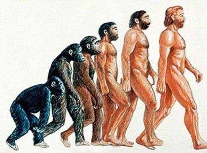 Teorias Antropológicas